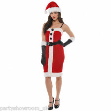 Adult Woman's Christmas Jolly Holly Santa Fancy Dress Party Costume PS