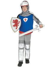 Child Medieval Lord Party Outfit Fancy Dress Costume Knight Kids Boys Book Week