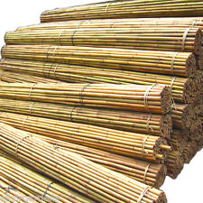 Extra Strong Bamboo Plant Support Garden Canes | 4ft 5ft 6ft 7ft 8ft 10ft