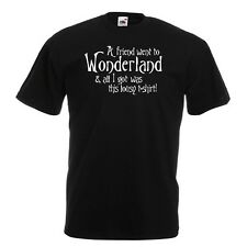 A Friend Went To Wonderland And All I Got Was This Lousy...Black T-Shirt Alice