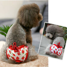 Fashion Pet Dog Puppy Sanitary Cute Pant Short Panty Striped Diaper Underwear