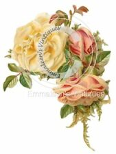 ~Vintage Shabby Victorian Yellow And Salmon Roses Waterslide Decals~FL292