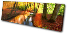 Landscapes Forest Stream SINGLE CANVAS WALL ART Picture Print VA