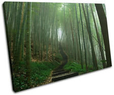 Japanese Forest Landscapes SINGLE CANVAS WALL ART Picture Print VA
