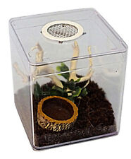 Tarantula,Praying Mantis,Stick Insect,Leaf Insect Scorpion,Cage,Insect Box