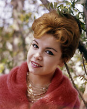 ANNETTE FUNICELLO IN SWEATER SMILING BY TREE PHOTO OR POSTER