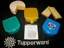Cheese Box CHOICE ~Tupperware Forget Me Not –OR- Kraft Singles Slice Keeper
