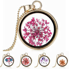 Women's Dried Flower Round Locket Pendant Gold Plated Glass Charm Chain Necklace