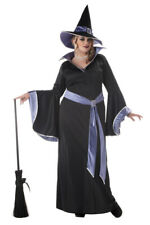 Plus Size Incantasia, The Glamour Witch Adult Halloween Costume