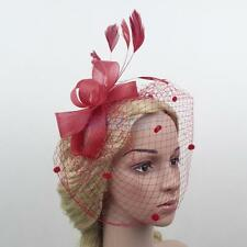 Wedding Hair Net Feather Fascinator Bridal Face Veil Headpiece Headwear