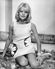 Hammerhead Judy Geeson Poster or Photo