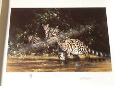 David Shepherd Clouded Leopard and cubs signed  limited edition print
