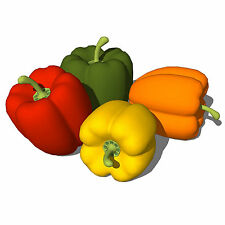 Sweet Bell Pepper Plants -25 Seeds- Red / Green / Orange / Yellow of Your Choice