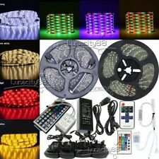 5M 10M 20M 3528 SMD Flexible LED Strips Lights Tape Stripe+12V Power+Remote IR