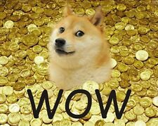 #042-  300 Dogecoin (0.3K DOGE)- Direct to wallet quick. DOGE mining contract