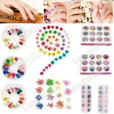 Wheel/Box 12 Color Dried Dry Flower Nail Art Decorations for UV Gel Acrylic Tips