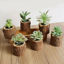 Plastic Artificial Succulent Flower Floral Mini Plants Foliage Garden Decor GIFT