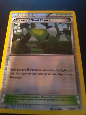 Pokemon XY Ancient Origins Forest Of Giant Plants 74/98 Reverse Holo