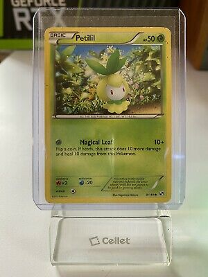 Petilil 9/114 - Common Pokemon Card - Black & White Set (2011) - NM