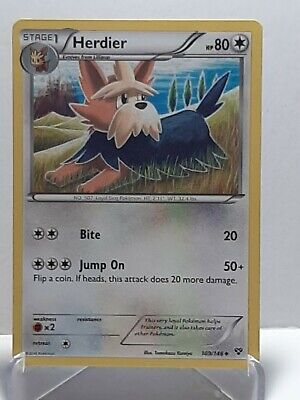 Herdier 109/146 Pokemon XY Colorless Uncommon Damaged Used See Pictures