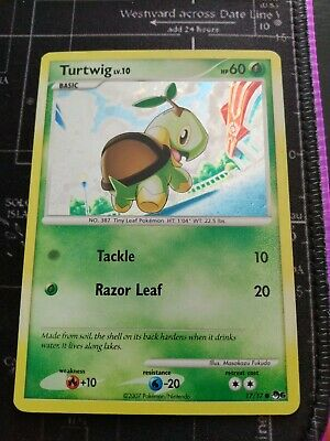 Turtwig POP Series 6 Holo Pokemon Card See Pics