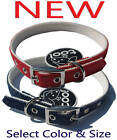 Too! Denim Nylon Dog Pet Collar with Pyramid Studs