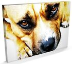 Staffordshire Bull Terrier Art, CANVAS A3 to A1 - v661
