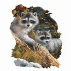 LOOKING FOR TROUBLE RACCOON T-SHIRT GIFT NOVELTY WILDLIFE ANIMAL WO