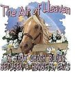 Horse Tshirt  The Air of Heaven   Sizes/Colors