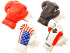 Pair of 12oz Boxing Gloves for 13 to 17 year old kids, 4 different designs