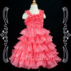 Flower Girls Wedding Pageant Ruffle Dresses WATERMELON RED NEW 2,3,4,5,6 years