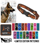 "Lupine Dog/Puppy Collar. 1"" wide, for med to XL dogs. Lifetime Guarantee"