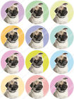 Cakeshop 12 x Pug Dog Edible Cake Toppers