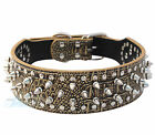 "Gold Brown Croc 2"" Wide PU Leather Spiked Studded Dog Collar Large Mastiff"