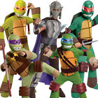 Deluxe Child TMNT Fancy Dress Costume & Mask Kids Teenage Mutant Ninja Turtles