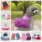 Various Pet Puppy Small Dog Cat Lace Dress Strip Dress Apparel Sailor Clothes