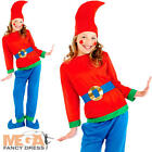 Blue Dwarf Gnome Elf Kids Fancy Dress Christmas Girls Boys Childs Costume Outfit
