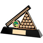 Pool Award Free Engraving Snooker Cue and Case Trophy
