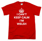 funny welsh shirts