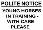 YOUNG HORSES TRAINING WITH CARE Personalised Metal SIGN NOTICE horse equestrian