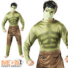 The Incredible Hulk Mens Fancy Dress Avengers Superhero Adult Costume + Mask