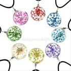 New Real Dried Dry Mixed Color Flower Lavender Glass Ball pendant Chain Necklace