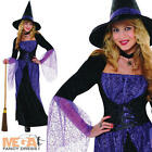 Pretty Potion Witch + Hat Ladies Halloween Fancy Dress Witches Womens Costume