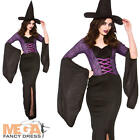 Alluring Witch Ladies Fancy Dress Halloween Womens Adults Costume + Witches Hat