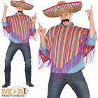 Mexican Poncho + Sombrero Hat Mens Fancy Dress Western Adults Costume Outfit