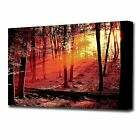 LARGE RED FOREST SUNSET CANVAS PRINT 2138