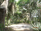 GILCHRIST ISLAND FLORIDA / 107 ACRE PRIVATE ISLAND /  YOUR OWN PRIVATE COMMUNITY