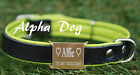 Personalised dog collar,engraved,variation of colours, real leather