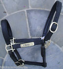 ENGLISH LEATHER NUBUCK HEADCOLLAR * BLACK FULL Personalised Engraved Name Plate
