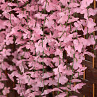 NEW Beautiful Artifical Fake Flowers Ivy Vine Hanging Garland Plant Wedding Home